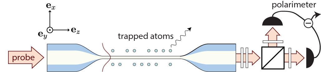 Spectroscopy on a nanofiber-trapped atom ensemble system